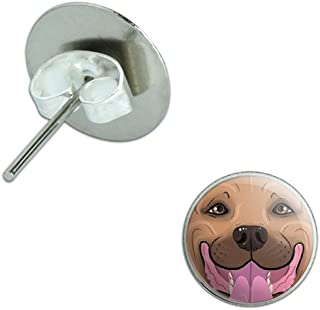 Graphics and More Fawn Pit Bull Face - Pitbull Dog Pet Novelty Silver Plated Stud Earrings