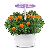Hydroponics Growing System, Indoor Herb Garden with Automatic Timer, Hydro Starter Kit for Beginners, Stylish Smart Planter Perfect for Home Kitchen Office, White, 4 Pods