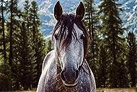スペクタキュラー 1500ピース ジグソーパズル | 森の中の馬
