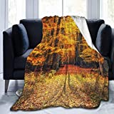 Ultra Soft Micro Fleece Manta,Magical Fall Photo in National Park with Vivid Leaf Plant Eco Earth Mystical Theme,Warm Throw Manta for Couch Bed Living Room 60'X 50'