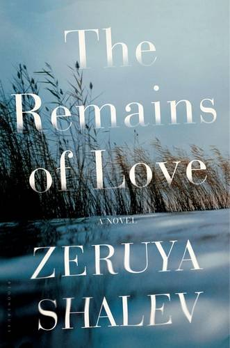 Image of The Remains of Love: A Novel