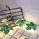 YLSMN Cadena de luz de Navidad Caja de batería Cadena de luz Hojas pintadas Fresa Muñeco de nieve Cactus Decoración navideña Luz lampara escritorio