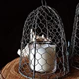 Colonial Tin Works Chicken Wire Cloche, 10 inches tall, Vintage, Rustic Barn Roof Finish, Silver