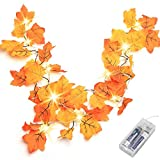 Thanksgiving Decorations Lighted Fall Garland,...
