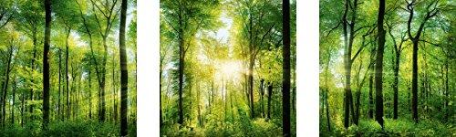 Eurographics Aufkleber, Plastik, Sunshine Sticker, Green, 30 x 30 cm, 30 x 0.4 x 30 cm