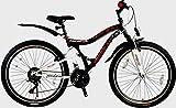 26' Zoll Mountainbike Herren Fahrrad Kinder Fahrrad Jungen Fahrrad RH 43 cm 21 Gang Shimanoschaltung
