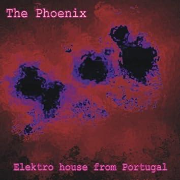 The Phoenix - Elektro House from Portugal