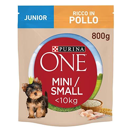 Purina One Mini croquetas para Perro Junior Rico en Pollo, con arroz, para Perros de hasta 10 kg, 8 Bolsas de 800 g Cada una. ✅
