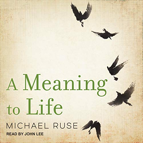 A Meaning to Life audiobook cover art