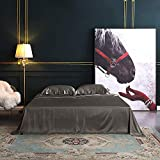 THXSILK 4pcs Silk Bed Sheets Set, 100% Long Stranded 25 Momme Mulberry Silk Bedding Set, Sheets and Pillowcase Set, Extremely Soft and Luxurious (Charcoal, California King)