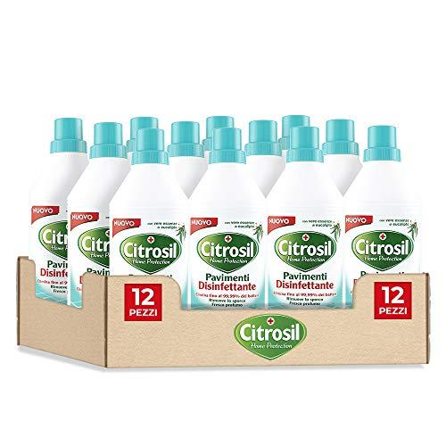 Citrosil Home Protection, Pavimenti Disinfettante con Vere Essenze di Eucalipto, 900 ml x 12 pezzi