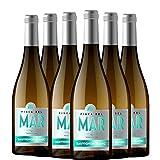 Finca del Mar Sauvignon Blanc Vino Blanco D.O. Valencia 6 Botellas - 750 ml