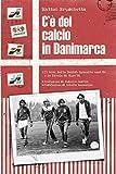 C'è del calcio in Danimarca: Il boom della Danish Dynamite anni '80 e la favola di Euro '92