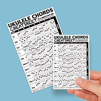 Small + Large Ukulele Chords Cheatsheet Bundle - Laminated and Double Sided Pocket Reference 4 x6  and 6 x9  • Best Music Stuff