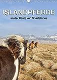 ISLANDPFERDE an der Küste von Snæfellsnes (Wandkalender 2020 DIN A3 hoch)