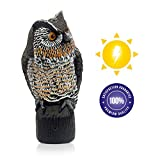 Lijo Solar Owl Animal Scarecrow Motion Activated Owl Decoy with Light and Sound - Repellent for Squirrels, Skunks, Raccoons and Birds - Garden Predator Deterrent and Outdoor Figurine Decoration