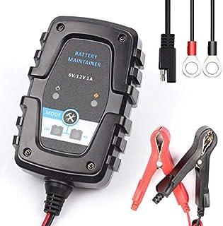 Cloverclover Chargeur Multifonctionnel de Chargeur de Batterie ATV 12V 1A de Moto de Voiture 15W Automatique
