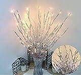 6 Pack Twig Lampe à Piles LED allumé Saule Branches Vase remplisseurs Utiliser pour la décoration de fête à la Maison de Noël intérieur extérieur