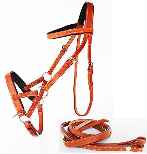 PRORIDER English Western Horse Leather BITLESS Bridle SIDEPULL Halter REINS TAN 7701TN