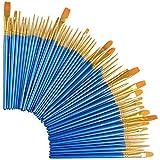 Juego de 50 pinceles de nailon para el pelo para acrílico, óleo, acuarela, pintura artística