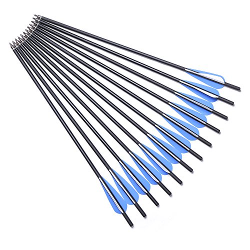 DMAR Crossbow Arrows Bolts Practice Arrows Hunting Archery Carbon Crossbow Bolt Lightweight Carbon Shafts Pack of 12pcs Carbon Spine 500 for Competition/Practice Hunting/Archery Accessories- 17 Inches