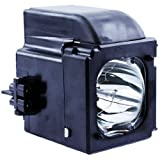 SAMSUNG BP96-01653A HLT5675SX TV Lamp