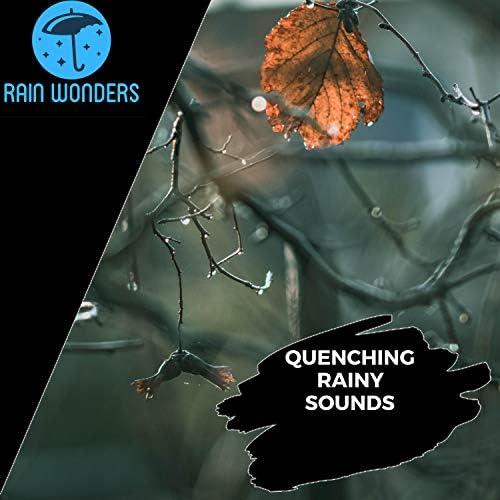 Calming Rain Music