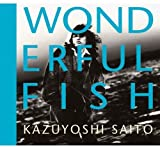 WONDERFUL FISH 歌詞