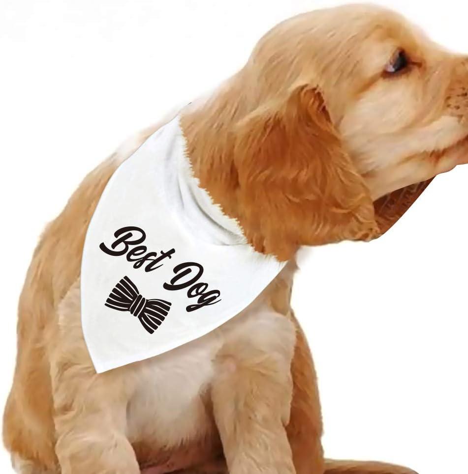 Blue Leaves Best Nashville-Davidson Mall Opening large release sale Dog Bandanas Wedding Bandana Bridal Party