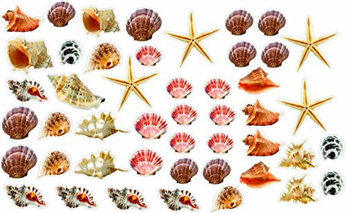 Wall Sticker Small Seashells and Starfish Colorful Removable and Repositionable (47pcs) Love Ocean Inspired Motivational Cute Wall Vinyl Art Wall Decor Sticker Decal