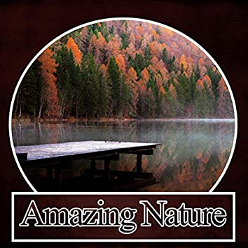 Amazing Nature – New Age Relaxation Sounds, Wellness Spa Lounge, Soothing Sounds, Gentle Touch, Background Music, Massage Spa
