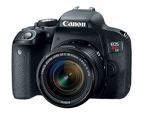 Canon EOS Rebel T7i US 24.2 Digital SLR Camera with 3-Inch LCD