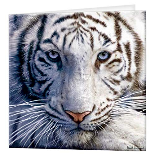 3D LiveLife Greeting Card - White Tiger Repose, Colourful Tiger Lenticular 3D Card from Deluxebase, for any occasion and age. Original artwork licensed from renowned artist, David Penfound!