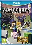 Minecraft + Super Mario Mash Up Pack - [Edizione: Francia]
