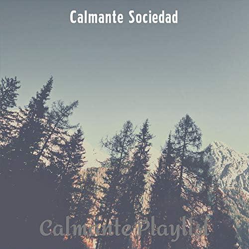 Calmante Sociedad