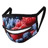 Hustor Frambuesas y arándanos tela cara Ma_sk con cremallera reutilizable lavable pasamontañas boca Co_ver para hombres y mujeres
