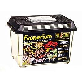 Exo Terra Standard Faunarium