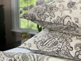 Tahari Home Queen Size Luxury 3 Piece Cotton Collection Duvet Comforter Cover and Two Pillow Shams Set Floral Rosemary Paisley Pattern in Charcoal on Cream Off White