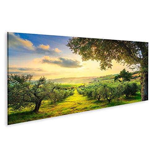Bild auf Leinwand Maremma-Landschaft Panorama und Olivenbäume im Sonnenuntergang Casale Marittimo Pisa Toskana Italien Bilder Wandbild Poster Leinwandbild