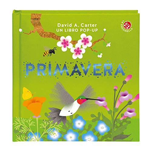 Primavera. Libro pop-up. Ediz. a colori