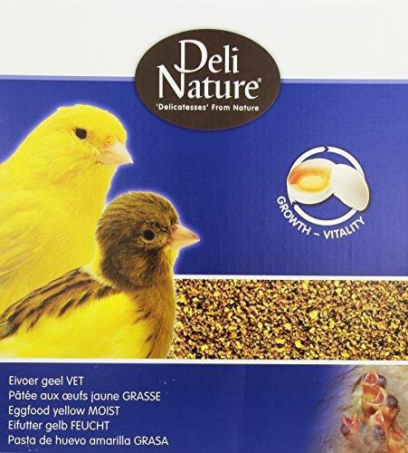 DELINATURE Pasta de Cría Amarillo Húmedo - 1000 gr, Pájaros