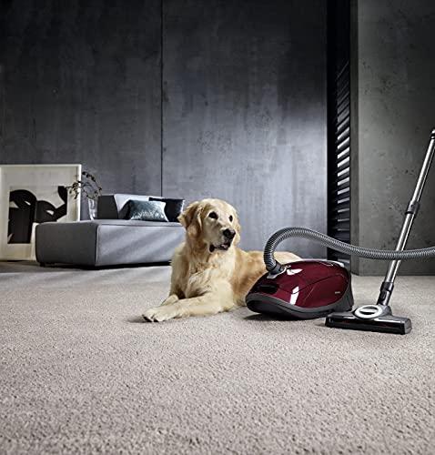 Miele Complete C3 Cat  Dog PowerLine Bild 6*