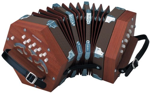 Our #2 Pick is the Hohner D40 Concertina