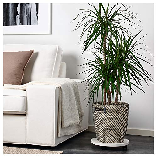 IKEA/イケアRAGKORN:鉢カバー24cmナチュラル