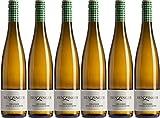 Benzinger Weisser Burgunder 2019 Trocken Ecovin Bio (6 x 0.75 l)