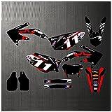 Soporte para matrícula de Motocicleta Pegatina de lámina de Motocicleta Patrón gráfico Espesado 0.8mm Protector Solar para Honda 2005-2007 2008-2012 CRF450X