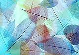 wandmotiv24 Fototapete Hell blau Laubstreu bunte Blätter XXL 400 x 280 cm - 8 Teile Fototapeten, Wandbild, Motivtapeten, Vlies-Tapeten Aquarell, Blatt, Herbst M2086