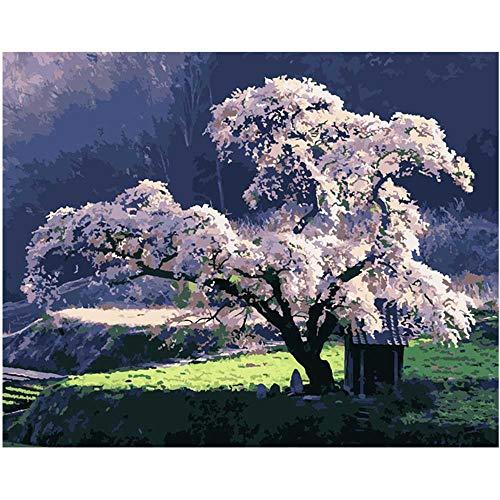 YSNMM Schilderij Door Getallen Diy Kers Bloesem Boom Bekijk Landschap Canvas Bruiloft Decoratie Art Picture Gift