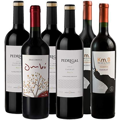Atlantik Weine, Probierpaket Uruguay, Weinpaket mit Rotwein aus Uruguay, Südamerika, Tannat Merlot Cabernet Sauvignon und Malbec, trocken (6 x 0,75l)