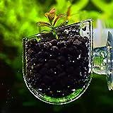 Danigrefinb Recipiente de cristal para plantas de acuario creativo para peces o pecera, color rojo, para alimentar a...